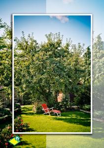Gartengestaltung Schmidt GmbH